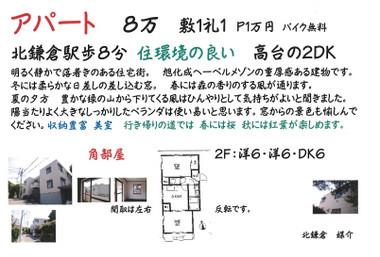 Kitakamakura_flores201_8